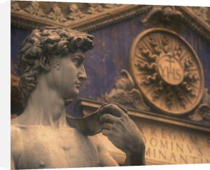 A reproduction of Michelangelo's David in Piazza della Signoria , Florence, Italy by Danita Delimont