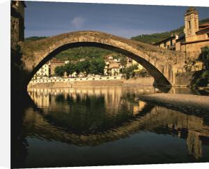 Il Ponte Vecchio in the town of Dolceacqua on the Riviera di Ponente, Italy by Danita Delimont