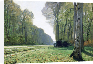 The Chailly Road or Road to Bas-Breau, Fontainebleau Forest, 1865 by Claude Monet