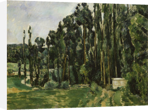 The Polars by Paul Cezanne