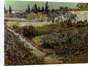 Blossoming garden and path by Vincent Van Gogh