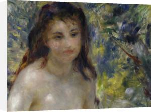 Female nude in the sun by Pierre Auguste Renoir
