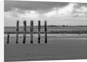 Groynes at ast head beach, West Susex coast by Assaf Frank