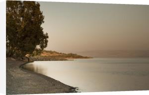 Beach against sky, Sea of Galilee at dusk, Israel by Assaf Frank