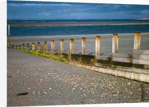 Wooden posts, West Wittering Beach, UK by Assaf Frank