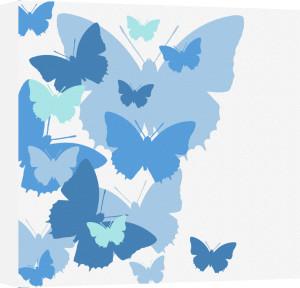 Butterflies by Erin Rafferty
