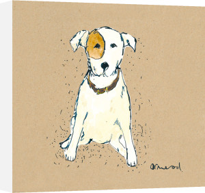 Doggy Tales II by Clare Ormerod