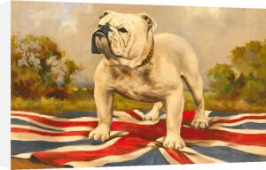 The British Bulldog by Anonymous