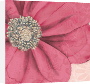 Grandiflora IX by Linda Wood