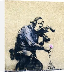 Photographer Flower by Street Art