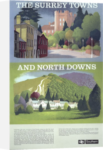 The Surrey Towns and North Downs by National Railway Museum