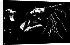 Bob Marley - B & W by Anonymous