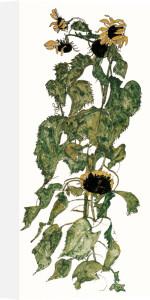 Sunflowers, 1917 by Egon Schiele