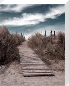 The Pathway by Gill Copeland