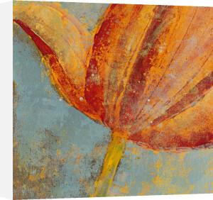 Floral Dream I by Lorello