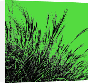Grass (green), 2011 by Davide Polla