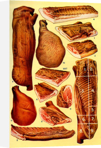 Bacon and Ham by Mrs Beeton