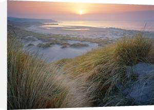 Budle, Misty Sunset by Joe Cornish