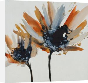 Sepia Bloom II by Lilian Scott