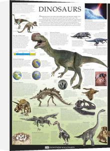 Dinosaurs by Dorling Kindersley