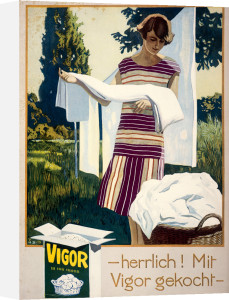 Vigor Washing Powder by Anonymous