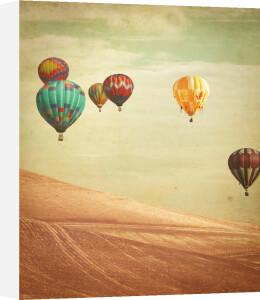 Wanderers by Keri Bevan