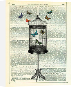 Bird Cage and Butterflies by Marion McConaghie