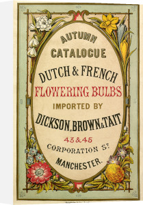 Autumn Catalogue by Dickson, Brown and Tait