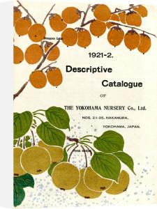 1921-2 by The Yokohama Nursery Co Ltd