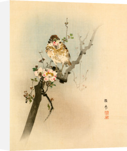 Malus sp. Blossom with Sparrow by Anonymous Chinese Artist