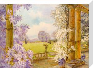 Wisteria by Edith Helena Adie