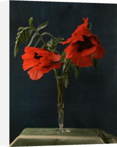 Red Poppies in Vase by William van Sommer