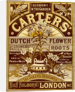Carters' Nursery Catalogue by Carters' Nursery