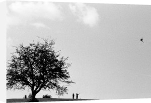Kite-flying, Hampstead Heath by Niki Gorick