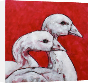 Ducks on Red by Nicola King