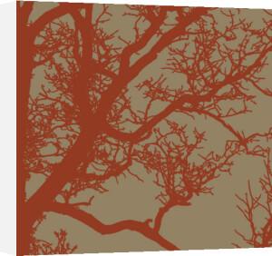 Cinnamon Tree IV by Erin Clark
