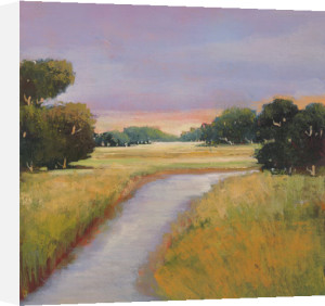 Golden Marsh by Adina Langford