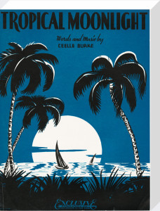 Tropical Moonlight by Anonymous