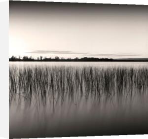 Sunset on Ottawa River, Study #2 by Andrew Ren