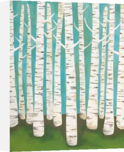 Summer Birches by Lisa Congdon