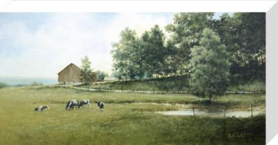 Country Lane by Ray Hendershot