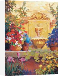 Patio Fountain by Carolyne Hawley