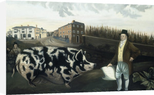 Joseph Lawton's Prize Gloucester by English Provincial School