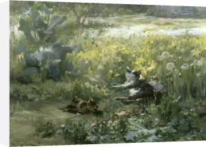 Chats dans un Pre by Gabriel Edouard Thurner