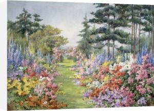 The Garden Walk by Edith Alice Andrews