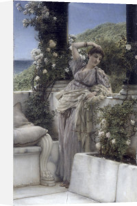 Thou Rose of All the Roses by Sir Lawrence Alma-Tadema