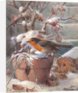 Frozen Out by Johannes Gerardus Keulemans