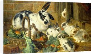 Bunnies, 1881 by Charles Burton Barber