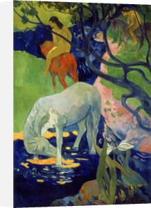 Le Cheval Blanc, 1899 by Paul Gauguin
