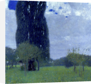 The Tall Poplar Tree 1, 1900 by Gustav Klimt